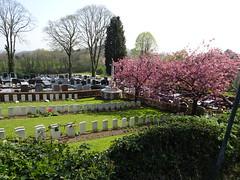 Cassel Communal Cemetery Extension en2019 (1) (Pierre Andre Leclercq) Tags: france hautsdefrance cassel cantondebailleul nord