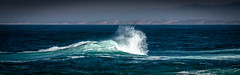Wave (CDay DaytimeStudios w /1 Million views) Tags: ca pebblebeach water 17miledrive pacificcoasthighway bluesky california highway1 montereyca pacificgrove carmelca ocean pacificcoast beach sky seascape coastline landscape rocks montereybay