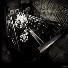 Fatalité dans l'escalier ... (Un jour en France) Tags: escalier assassin carré square canoneos6dmarkii canonef1635mmf28liiusm noiretblanc noiretblancfrance