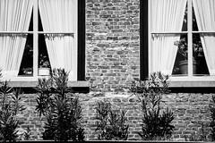 (schrst) Tags: black white blackandwhite bw nikon d3400 outside blackwhitephotos blackwhite building buildings shadows shadow light lights streetphotography street urban urbanphotography constract nikond3400 55200mmlens