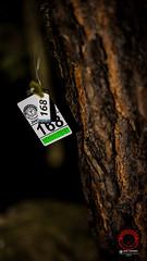 """foto adam zyworonek fotografia lubuskie iłowa-0623 • <a style=""""font-size:0.8em;"""" href=""""http://www.flickr.com/photos/146179823@N02/46918769215/"""" target=""""_blank"""">View on Flickr</a>"""