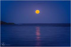 Luna .. (e0nn) Tags: tamron tamronspaf70200mmf28dildifmacro pentax pentaxk1 ricoh luminar3 skylum affinityphoto shellharbour bushrangersbay moonrise moon night nocturnal steveselbyphotography steev steveselby