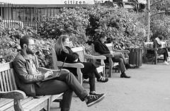 One Citizen per bench..... (markwilkins64) Tags: streetphotography street benches bench candid mono monochrome blackandwhite bw towerhill london uk men women beard laptop mobilephones markwilkins gardens cigar smoking