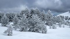 Lagunas de Neila (m.tamayosky) Tags: luz nieve invierno lagunas hielo tormenta cielo azul