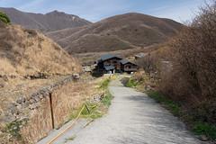 20190416a73_7272 (Gansan00) Tags: ilce7m3 α7ⅲ sony japan 大分 oita 日本 九重連峰 登山 landscape snaps ブラリ旅 04月 fe24105f4 trekking travelphotography