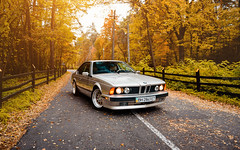 BMW E24 (Andrey Baydak) Tags: bmw 6series 6er coupe e24 classic 1980s 1988 shark sharknose 635 635csi m30b35 inlinesix autumn осінь осень herbst fall leaves orange forest лес ліс backroad millemiglia 1000miglia perspective wideangle 2470 automotive