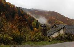Tardor en el pirineo (isabelpn) Tags: paisaje naturaleza otoño montaña casa niebla
