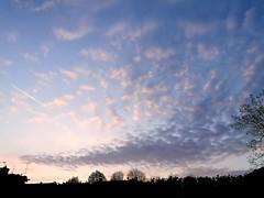 iniziare bene la giornata (Cix M.D) Tags: cielo nuvole alberi huawei p9 italia clouds sky