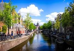 The Oude Kerk (Amsterdam, Netherlands 2019) (Alex Stoen) Tags: alexstoenphotography amsterdam europe holland leicamptyp240 netherlands spring summiluxm35mm travel city