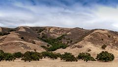 San Felipe hills (Jersey JJ) Tags: san felipe hills pacheco pass highway drive by shooting california landscape