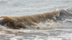 Wave (Future-Echoes) Tags: northsea waltononthenaze sea wave water coast essex 2019