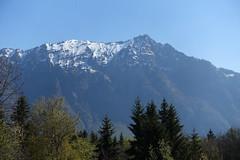 Pointe de Marcelly @ Hike to Mont Orchez (*_*) Tags: spring printemps 2019 morning matin europe france hautesavoie 74 montorchez marche walk randonnee mountain montagne hiking nature savoie chablais may mai surlecoux