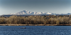 Rowing Crew Works Out With Pike's Peak In Background (dcstep) Tags: dsc6931dxo sonya7riii fe100400mmf4556gmoss crew rowing skull mountain pikespeak sky water reservoir cherrycreekreservoir denver aurora parker greenwoodvillage colorado usa woods handheld allrightsreserved copyright2019davidcstephens dxophotolab22 healthylifestyle exercise row oars boat cherrycreekstatepark