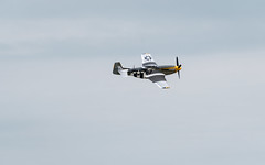 P-51 Mustang (ep_jhu) Tags: xt3 andrewsafb aircraft airplane ww2 fujifilm mustang andrewsairforcebase legendsinflight fuji airshow military p51d 2019 wwii jointbase andrewsfield maryland unitedstatesofamerica