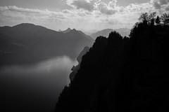 Good Friday Silhouettes (Toni_V) Tags: m2400664 rangefinder digitalrangefinder messsucher leicam leica mp typ240 type240 28mm elmaritm12828asph hiking wanderung randonnée escursione bürgenstock stansstadrütli nidwalden waldstätterweg vierwaldstättersee alps alpen switzerland schweiz suisse svizzera svizra europe bw monochrome schwarzweiss blackwhite lake clouds sky frühling spring karfreitag ©toniv 2019 190419 hammetschwand