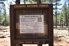 Lava River Cave in Coconino National Forest (Pictures by Ann) Tags: arizonatrip arizona2017 arizona az cocochino coconinonationalforest lavatubes unsupervised onyourown explore exploration fun discovery underground cold chilly flagstaff rules