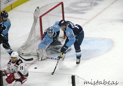 Someone Get The Puck!! (mistabeas2012) Tags: ahl hockey