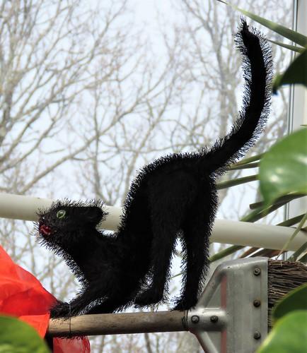 Pääsiäisnoidan kissa / Witch's cat