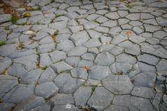 Calzada de gigantes (SantiMB.Photos) Tags: 2blog 2tumblr 2ig santjoandelesfonts garrotxa girona invierno winter basalto basalt boscarró rocas rocks geo:lat=4221412850 geo:lon=250976275 geotagged santjoanlesfonts cataluna españa