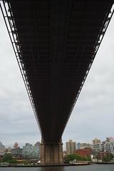 P5110706 (Vagamundos / Carlos Olmo) Tags: vagamundos vagamundos19usa new york newyork nuevayork usa eeuu