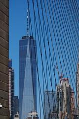 P5110599 (Vagamundos / Carlos Olmo) Tags: vagamundos vagamundos19usa new york newyork nuevayork usa eeuu