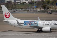 Fukuoka Airport 2019.4.13 (37) (double-h) Tags: omd em1markii omdem1markii lumixgxvariopz45175mmf4056asphpowerois rjff fuk fukuokaairport 福岡空港 airplane 飛行機 observationdeck 展望デッキ