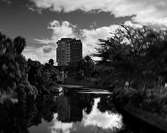 Urban Motion (digitalmavin) Tags: blackandwhite blackandwhitephotography clouds motionblur building bridge canal highlights shadows contrast reflection trees capetown urbanscape sky francphotographyza photography southafrica africa
