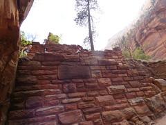 P1000552 (odetojoy24) Tags: zion utah angels landing hiking