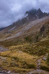 Horses, Südtirol (::ErWin) Tags: schnals trentinoaltoadige italien schnalstal pfossental vinschgau eisjöchl stettiner wolken clouds mountains berge regen rain südtirol texel texelgruppe meraner höhenweg pferd horse