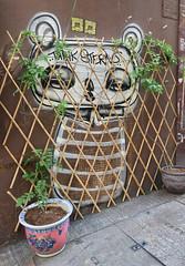 Think Sterns (cowyeow) Tags: china street chinese asia asian 香港 hongkong sheungwan city urban composition graffiti wall streetart funny odd weird funnyhongkong funnychina face trellis plant plants urbangarden