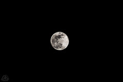 DSC_0849 (classic77) Tags: earths moon our satellite full