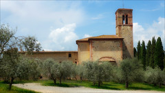 The Church on the Hill (kate willmer) Tags: building church architecture trees olivetree tuscany italy