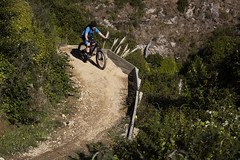Weta (Wozza_NZ) Tags: bamba belmontreserve mountainbike wellington lowerhutt nz newzealand switchback mtb bike weta