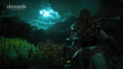 Horizon Zero Dawn (PS4 Pro) (eudesflick) Tags: ps4 ps4pro playstation screenshot game horizon zero dawn