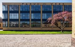 Modern Times (katrin glaesmann) Tags: faguswerk alfeldleine gropius bauhaus architecture 1911 unescoworldheritagesite