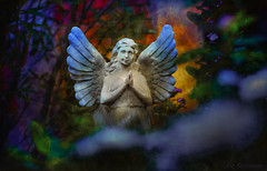 touché par la magie de la beauté angélique... (JDS Fine Art Photography) Tags: angel angelic statue inspirational spiritual prayer love compassion devotion beauty angelicbeauty peace strength