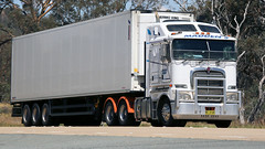 White on White (1 of 3) (Jungle Jack Movements (ferroequinologist)) Tags: sar damorange refrigerated transport maddens harden kenworth k200 t909 ct t610 bowning hume highway nsw new south wales australia hp horsepower big rig haul haulage freight cabover trucker drive carry delivery bulk lorry hgv wagon road nose semi trailer deliver cargo interstate articulated vehicle load freighter ship move roll motor engine power teamster truck tractor prime mover diesel injected driver cab cabin loud rumble beast wheel exhaust double b grunt