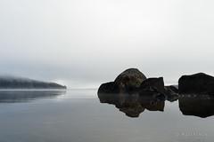 20190419-01-Mist Lake St Clair (Roger T Wong) Tags: 2019 australia cradlemountainlakestclairnationalpark lakestclair np nationalpark rogertwong sel24105g sony24105 sonya7iii sonyalpha7iii sonyfe24105mmf4goss sonyilce7m3 tasmania bushwalk fog hike lake mist outdoors reflection tramp trek walk water