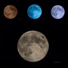 Sister Of The Moon (2) (Chris Ehrlich Photography) Tags: cde photography nature moon nikon solar full art ngc nc