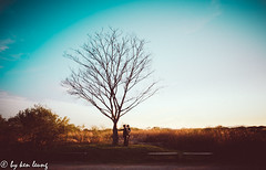 untitled (~kenlwc) Tags: korea tree nature color people polaroid leica18mmasph 18mm kenlwc kenleung landscape sonya7r2 prime lens leica