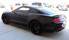 2019 Mustang GT (twm1340) Tags: 2019 jones ford verde valley camp az arizona dealer new car