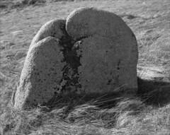 rocher anthropomorphe (JJ_REY) Tags: rocheranthropomorphique anthropomorphicrock montagne vosges steinberg moutains bw film largeformat 4x5 fuji acros100 toyofield rodenstock aposironarn 150mmf56 alsace france
