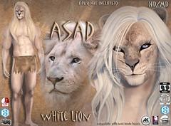 Asad avatar white (Alea Lamont) Tags: ndmd asad lion avatar omega skin appliers catwa vista signature belleza male head body slink ak