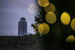 Williams Tower - 4800 Fournace (Mabry Campbell) Tags: 2019 4800fournace bellaire harriscounty hines houston jll mabrycampbell may philipjohnson texas usa williamstower architecture building commercial image light lights night photo photograph trees