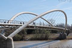 Mayfly Bridge 094 (Andras Fulop) Tags: szolnok hungary canon bridge water river