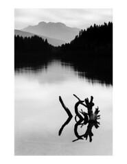 (Brendan | Toews) Tags: leica leicam7 leicasummilux50mmf14asph 50mm ilford ilfordfp4 bw blackandwhite film mountains lake landscape britishcolumbia