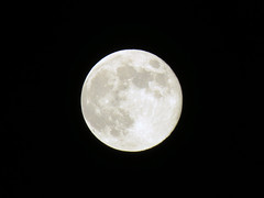 Full Moon, Hemel Hempstead 2019 (Dave_Johnson) Tags: fullmoon moon space astronomy sky april hemelhempstead herts hertfordshire