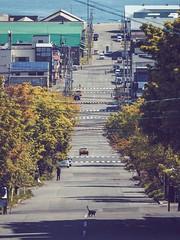 Hokadate|Hokkaido (里卡豆) Tags: hokadate 函館 hokkaido 北海道 日本 jp olympusem1markii em1ii olympus40150mmf28