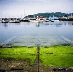 Japon_Setouchi (yoannpupat) Tags: e6 120 paysage rolleiflex nature water japan setouchi mousse square carré provia 100iso