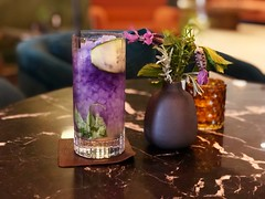 The Forager (Griffo Gin, Italicus Rosolio, Butterfly Pea Tea, Cucumber, Basil, Lime, Fresh Herbs) (sarahstierch) Tags: macarthurplacehotelspa macarthurplace sonoma california hotelbar cocktails cocktail drink alcohol gin italicusrosolio butterfly pea purple cucumber basil